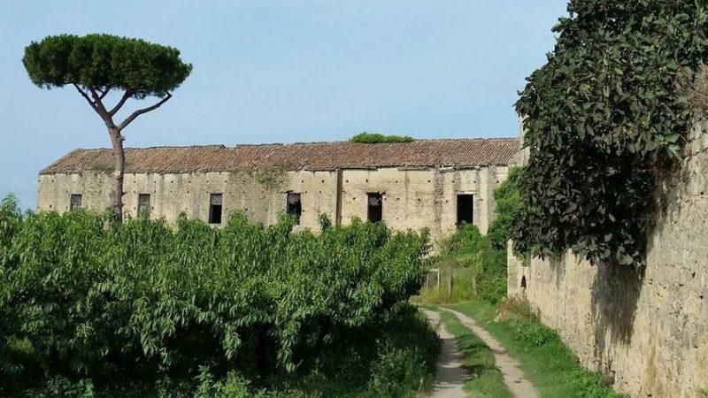 Le origini antiche della masseria al borgo di Casacelle